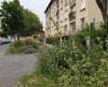 VILLETANEUSE (93430), 2 Chambres Chambres, ,1 Salle de bainsSalle de bain,Appartement,A Vendre,rue Marcel Sembat,1118
